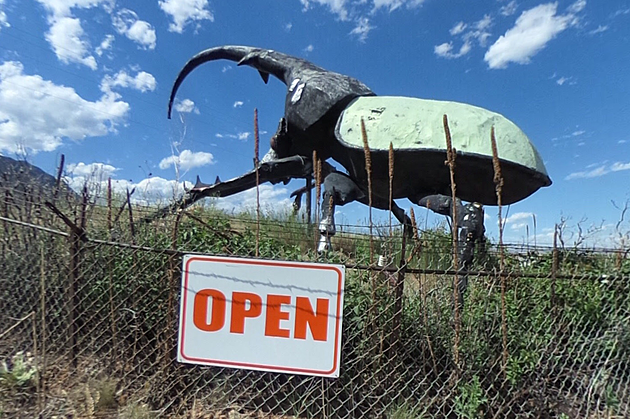 This Roadside Attraction is So Strange You Can Only See it in Colorado