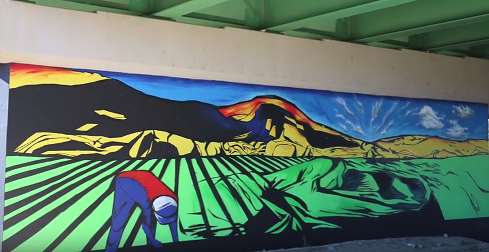 Paint Your Own Mural in Grand Junction and Fruita